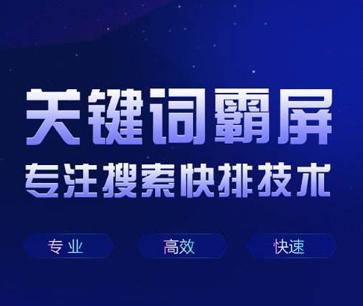 宝塔网络推广公司,网站seo服务外包