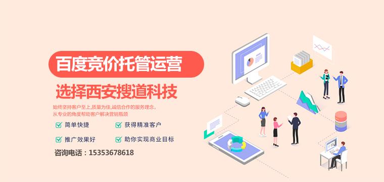 靖边网站设计制作多少钱,实力保障